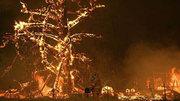 Photo of Збиток від пожеж в Австралії становитиме 3,5 мільярда доларів