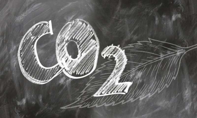 Photo of Водопровідна мембрана дозволяє вуглекислому газу швидко перетворюватися на паливо