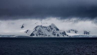 Photo of Туризм підвищив ризик проникнення в Антарктиду інвазивних видів