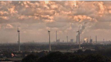 Photo of Екологи: Озон щорічно вбиває понад десятка тисяч людей