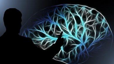 Photo of Медики перерахували 8 важливих симптомів раку головного мозку