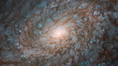 Photo of Космічний телескоп «Габбл» отримав дивовижний знімок флоккулентної спіральної галактики NGC 4237