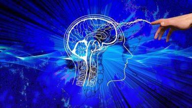 Photo of Де в мозку людини народжується страх