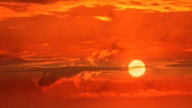 Photo of Нова недорога сонячна технологія для охолодження