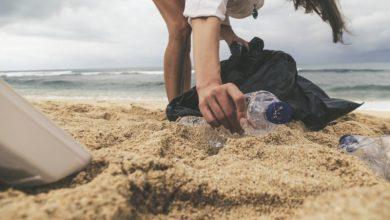 Photo of Вчені представили біорозкладний пластик з рослин