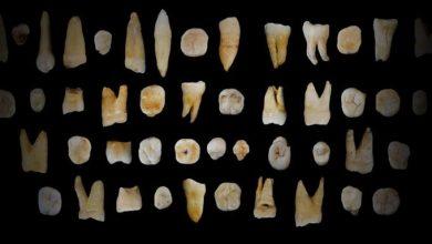 Photo of Зуби людей виявилися «літописом» їх життя