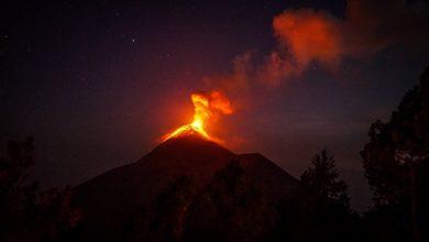 Photo of Вулкани звинуватили в провокації масового вимирання