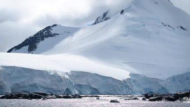 Photo of Швидкість танення льодів Антарктиди може досягати 50 метрів в день