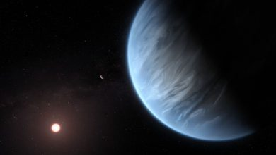 Photo of Розумне життя на двійниках Землі назвали рідкістю
