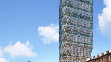 Photo of Представлений проект найвищої в світі вежі з дерева