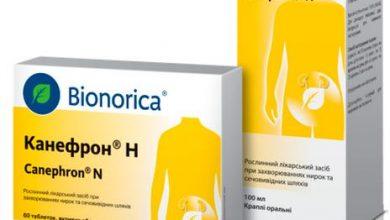 Photo of Канефрон® Н: помощь при проблемах мочевыводящих путей