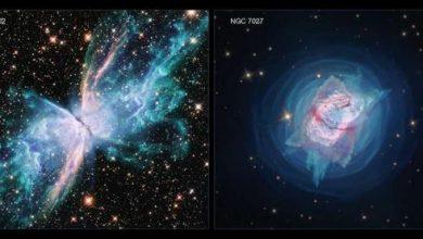 Photo of Зірки «сходять з розуму» на новому знімку «Хаббла»