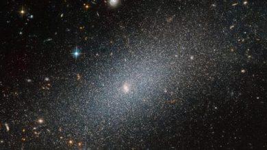 Photo of Хаббл сфотографував галактику PGC 29388