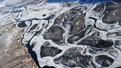 Photo of Пожежі в Арктиці призвели до рекордних викидів газів в атмосферу