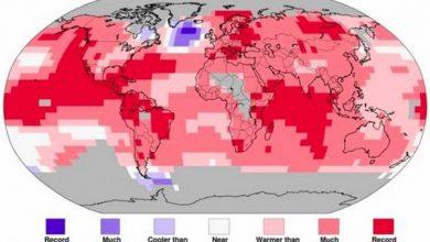 Photo of «Холодний міхур» в Атлантичному океані порушив тренд глобального потепління