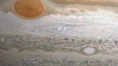 Photo of Астроном-любитель з ПАР розгледів новий конвективний шторм на Юпітері (фото)