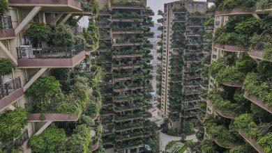 Photo of Китайський проєкт житлового комплексу з «вертикальним лісом» провалився