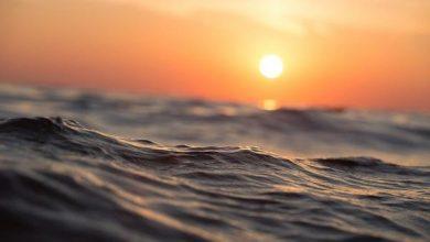 Photo of Вчені вивчили потепління океану по хвилях землетрусів
