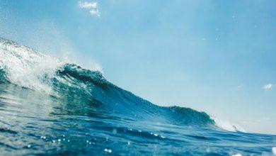 Photo of Океани можуть зупинити глобальне потепління