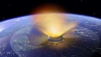 Photo of Визначена причина глобального похолодання, що завершило вимирання динозаврів