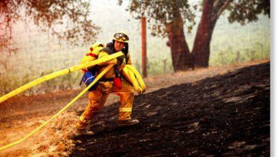Photo of 1,6 мільйона гектарів спалені в результаті лісових пожеж в Каліфорнії