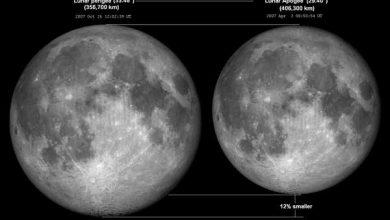 Photo of Вчені згенерували вид Місяця на весь 2021 рік (відео)