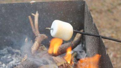 Photo of Приготування їжі на дровах може привести до розвитку легеневих хвороб