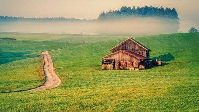 Photo of Будівництво з дерева виявилося ефективним для боротьби з глобальним потеплінням