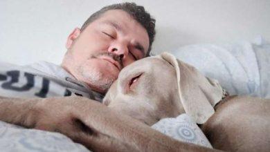 Photo of Міцний сон може знизити ризик розвитку серцевих захворювань