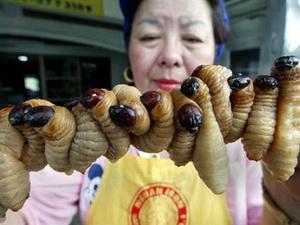Личинки комах - їжа майбутнього?