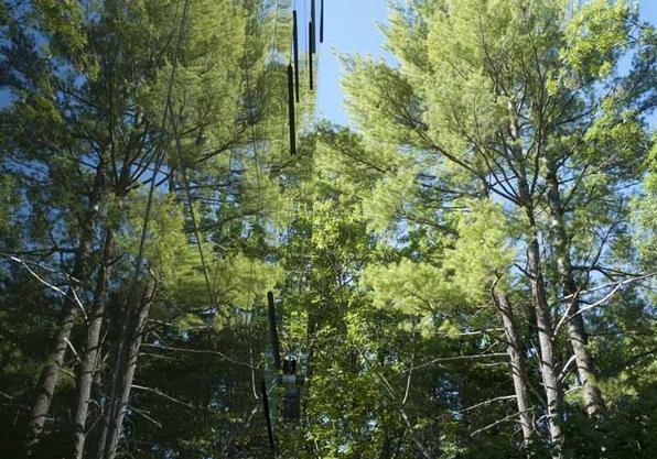 Заміський будинок у лісі - Tower House від студії Gluck+ (9)