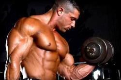 Як наростити м'язи, якщо всі калорії йдуть в енергію?
