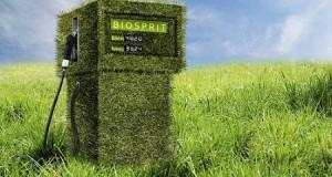 Розроблено новий вид біопалива на основі рослинних відходів