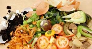 Нова технологія отримання біопластика з фруктових відходів