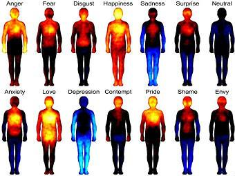 Тілесна карта емоцій