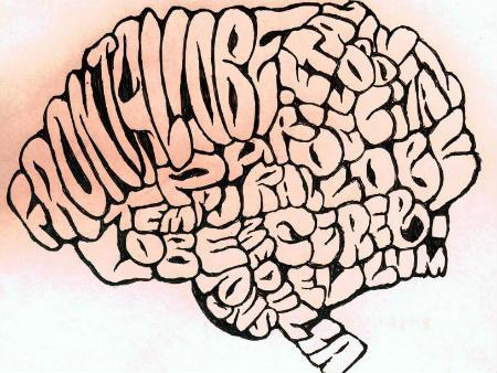 Як вивчення іноземних мов впливає на мозок людини?