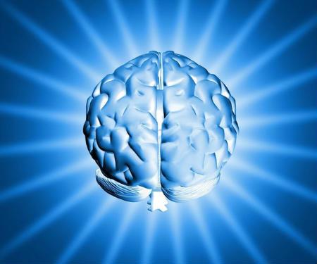 neurons2_450