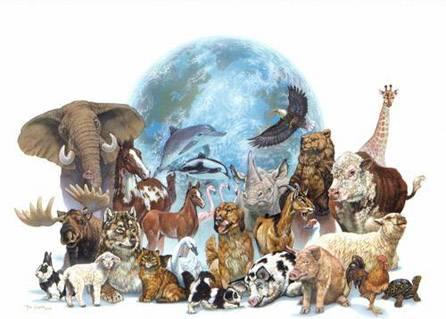 Світ знаходиться на межі великого вимирання видів рослин і тварин
