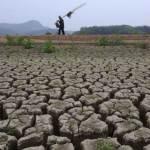 Щодня сіль вбиває 2000 гектарів землі