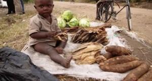 В ООН стурбовані наявністю на Землі їжі для зростаючого населення
