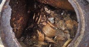 Собака відкопала скарб золота на 10 мільйонів доларів