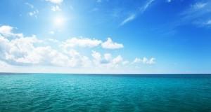 Морській фауні загрожує апокаліпсис