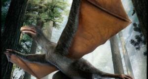 У Китаї знайдений динозавр, схожий на кажана