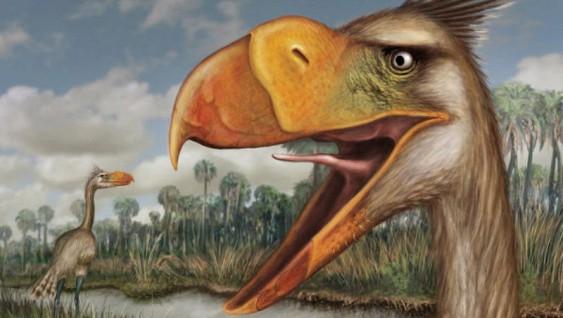 Після зникнення динозаврів на Землі домінували гігантські птахи