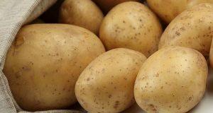 факти про картоплю