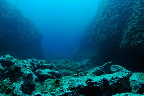 Нідерландські геологи створили перший атлас потонулих літосферних плит