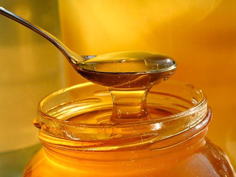 Ученые: Большое количество меда приводит к проблемам со здоровьем