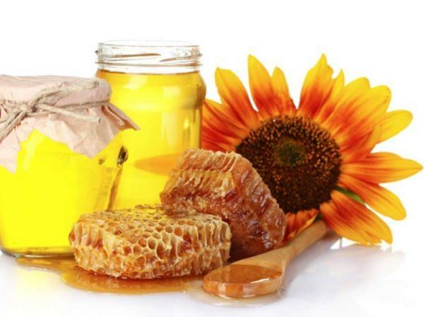 соняшниковий мед
