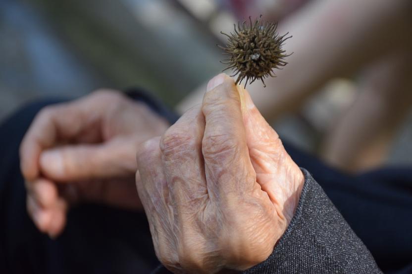 Ученые бросили силы на создание «сыворотки долголетия»