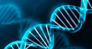 ДНК профайлинг